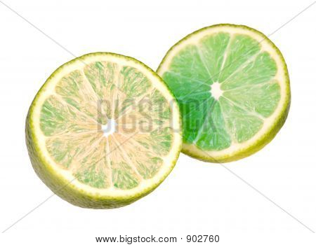 Lime On White With Path