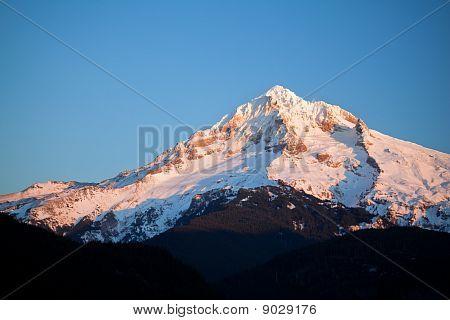 Mt. Hood In Winter