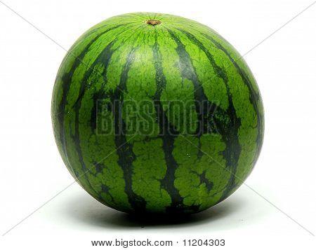 Watermelon Ripe Green