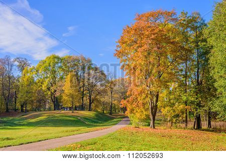 Beautiful Park in the autumn