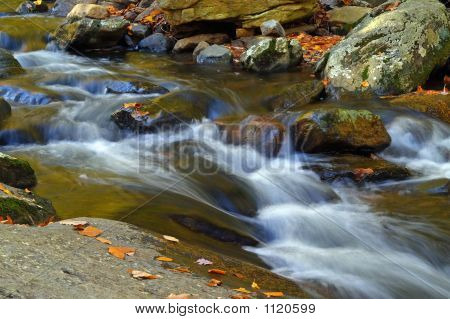 Stream In New Jersey State Park