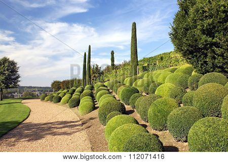 Park Of The Castle Of Amboise In The Loire Valley