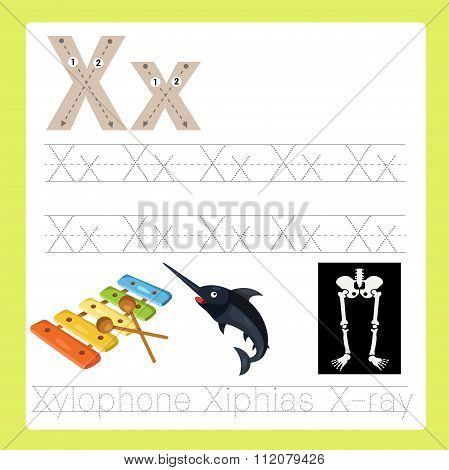 Illustrator of X exercise A-Z cartoon vocabulary