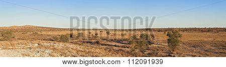 Dry Nossob River,South Africa