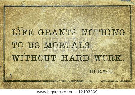 Hard Work Horace
