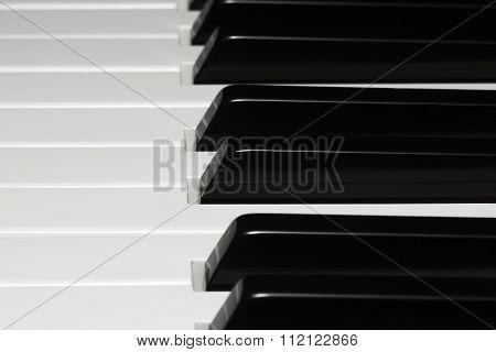 Piano keys - the selected focus