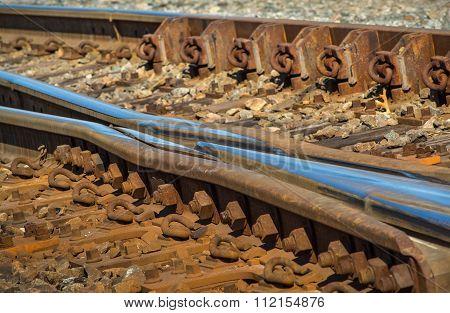 Railroad Tracks Frog