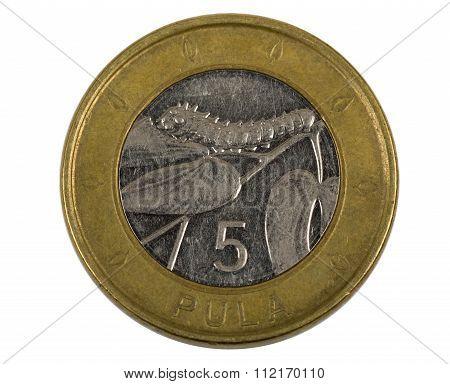 Detail Of Botswana Pula Coin