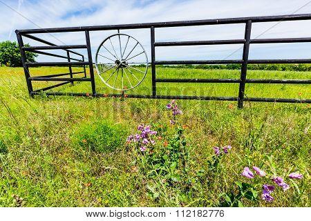 Wagon Wheel Fence And Texas Wildflowers
