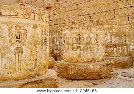 The Cobras Of Habu Temple