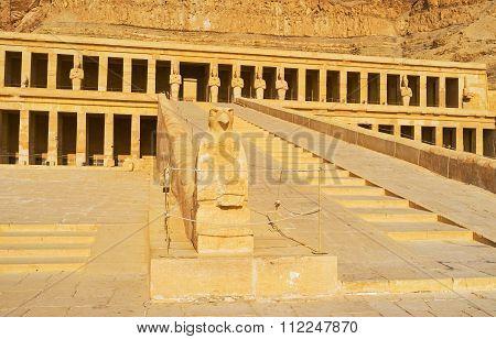 The Falcon Of Hatshepsut