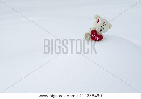 Teddy Bear On The Snow Hillock