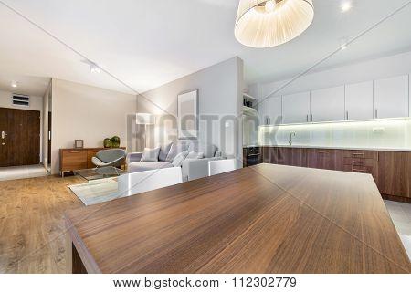 Interior Design: Living Room And Kitchen