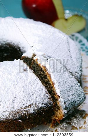 apple cake topped with icing sugar and apple 2