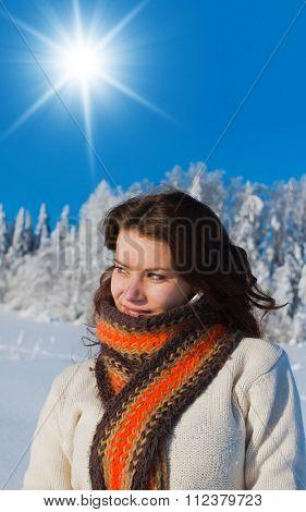 Midwinter Sunshine Under the Sun
