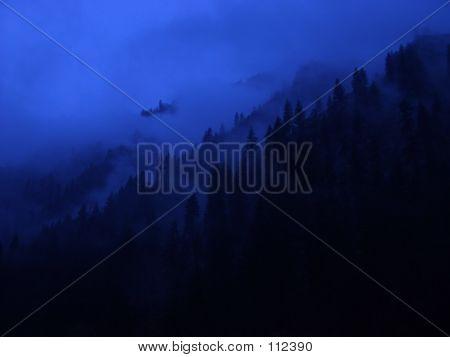 Misty Mountain Fog