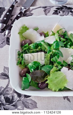 Salad leaves, close-up.