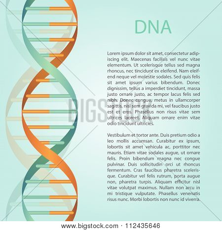 Medical Bckground With Dna Molecule With Place For Text. Can Be Used For Texts About Cloning, Dna, G