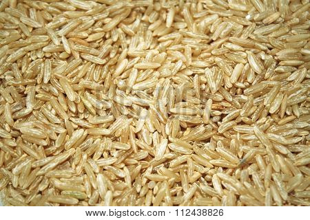 Close up of uncooked whole grain brown rice