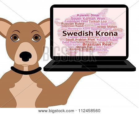 Swedish Krona Indicates Foreign Exchange And Broker