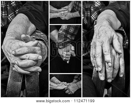 Collage Old Hands