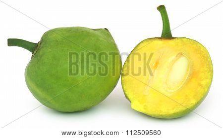 Garcinia Tinctoria Or Edible Daophal Of Bangladesh
