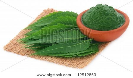 Medicinal neem leaves with ground paste over white background poster