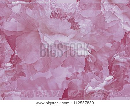 Floral Potpourri With Peonies in Magenta