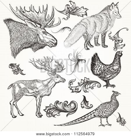Set Of Vector Detailed Animals And Flourishes For Design