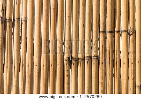Closeup Of The Old And Weathered Bamboo