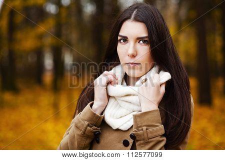 Beautiful Elegant Woman. Autumn