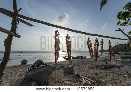 Dried Fish in Sabtang Island, Phillipines.