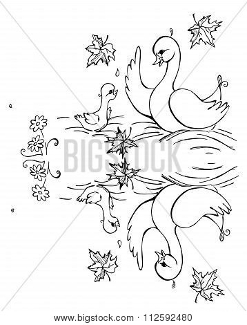 Duck And Duckling Are Reflecting In The Lake. Black And White Vector Illustration. Coloring Book.