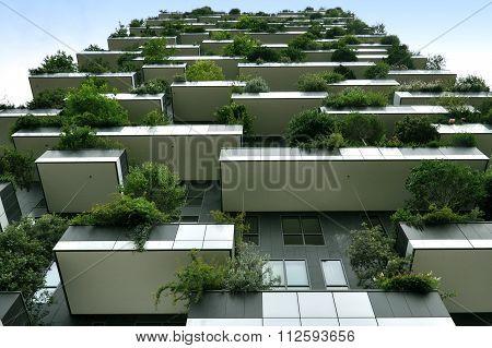 Skyscraper with growing trees in Milan. Lookup