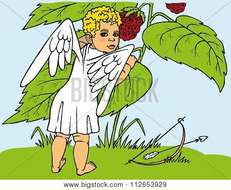 Cupid And Berries