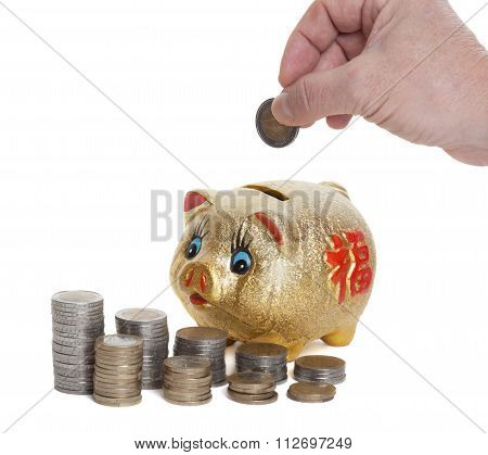 Golden piggy bank is fed with a coin in front of white background
