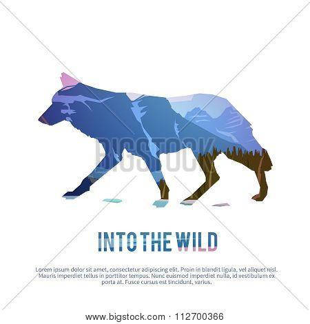 Coyote. Vector illustration.
