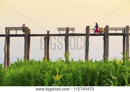 Amarapura, Myanmar - Febbruary 19, 2015 : An Unidentified Man With A Bike Walks On U Bein Bridge On