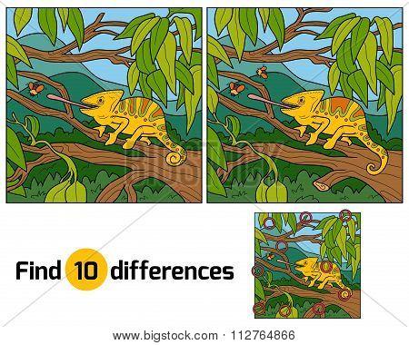 Find Differences, Game For Children (chameleon)