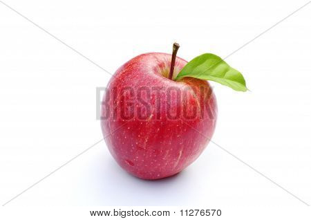 Fresh red apple on white