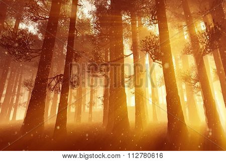 Mysterious Fairy Tale Deep Magic Forest 3D Illustration Artwork poster