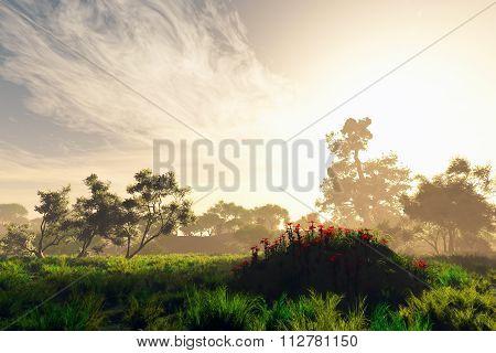 Wonderful Fairy Tale Magical Summer Field