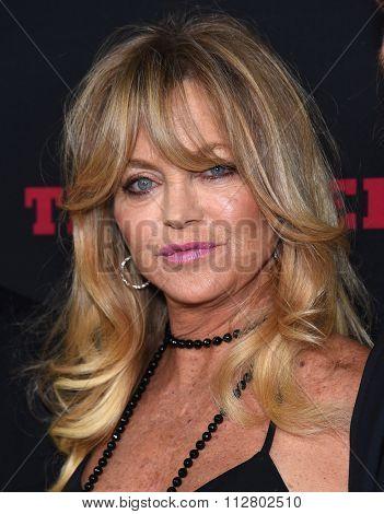 LOS ANGELES - DEC 07:  Goldie Hawn arrives to the