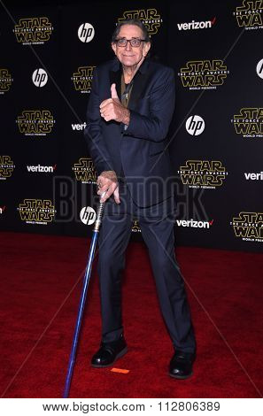 LOS ANGELES - DEC 14:  Peter Mayhew arrives to the