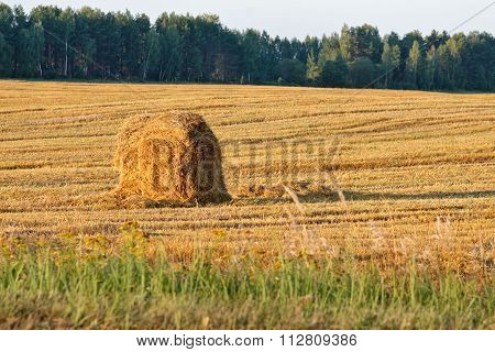 Russian countryside landscape with a haystack