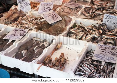 Different Types Of Fish And Seafood Lay, Naples