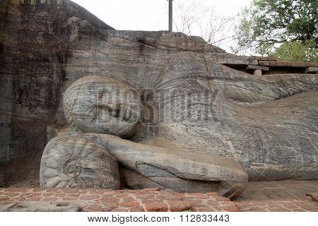 Gal Vihara (Buddha statue) in Polonnaruwa Sri Lanka