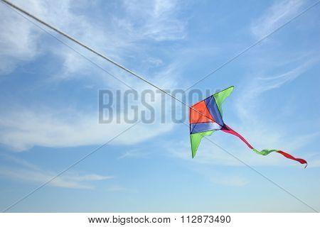 Kite on the sky