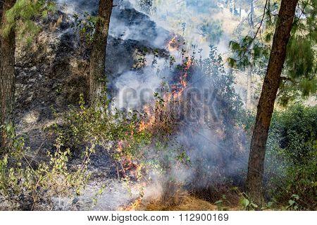 Raging Fire In Hills