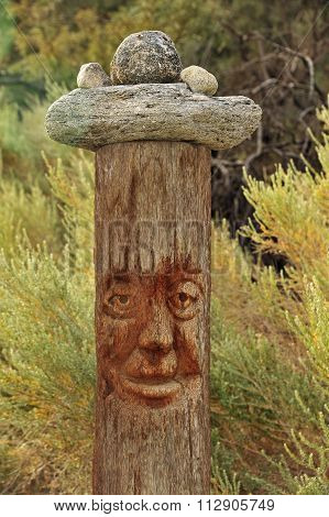 pole with face